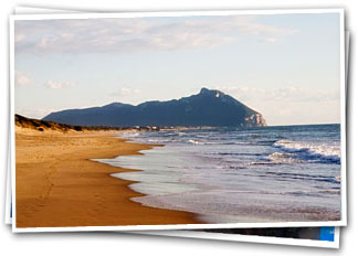 The beach and the Circeo promontory - San Felice Circeo, Latina, Italy - Holiday Home rental by owner